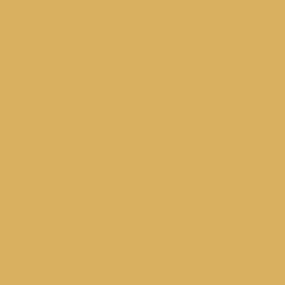 B31 ginger yellow (NCS S 2060 - Y10r)